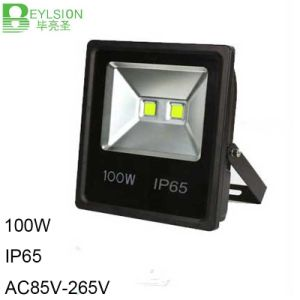 100W IP65 LED Flood Lamp Outdoor Light pictures & photos