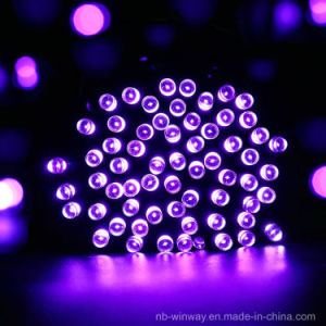 Solar Powered 100 LED Violet Outdoor Christmas String Lights pictures & photos