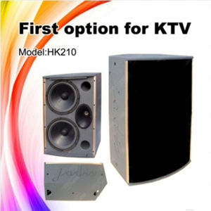 HK210 PA Speaker Dual 10inch Professional Sound System pictures & photos
