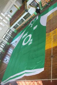 Giant Flag for Festival/Advertisement/Sports (0010) pictures & photos