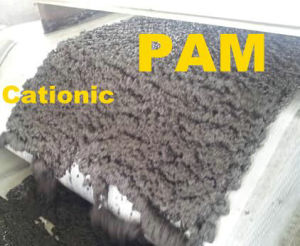 Oil Drilling PAM, PHPA High Molecular Weight Polyacrylamide