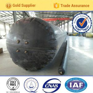 Inflatable Rubber Core Mold Used for Construction and Pouring Concrete pictures & photos