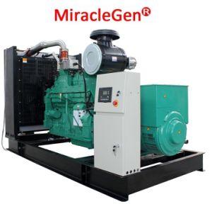 Natural Gas Generator 300kw