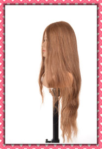Factory Sale Mannequin Head Human Hair Training Head 24inches pictures & photos