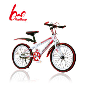 20 Inch Children Bicycle Within Air Tire pictures & photos