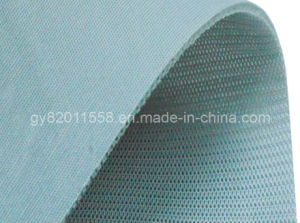 Polyester Interlock Fabric (GY-S53) pictures & photos