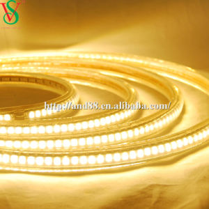 230V Outdoor LED Strip Light pictures & photos