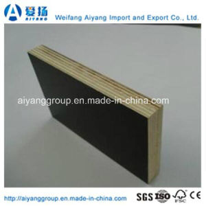 Film Faced Plywood/ Construction Formwork/ Shuttering Plywood with Poplar Core pictures & photos