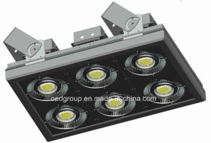 CREE LED 600W LED Flood Lighting for Industrial Use pictures & photos