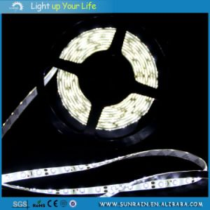 SMD5050 Decoration Light LED Strip Light 5m/Roll 12V pictures & photos