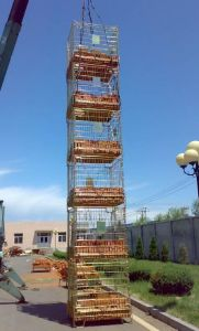 Collapsible Steel Logistic Warehouse Storage Wire Cages pictures & photos