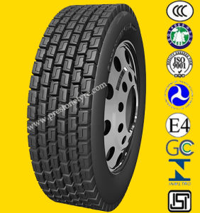 Chengshan /Triangle All Steel Radial Truck Tyre 11.00r20 12.00r20 pictures & photos
