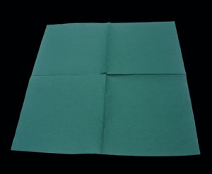 Color Napkin pictures & photos