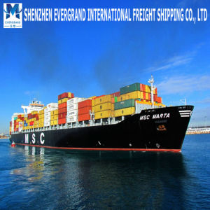 Sea Freight Door to Door From China to Belgium pictures & photos