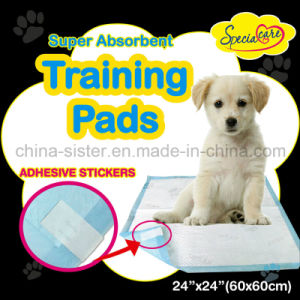 Quick Dry Pet PEE Pads for Housetraining Puppies and Dogs pictures & photos