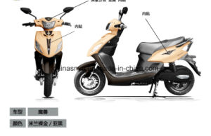 2016 Popular New Design Electric Bicycle
