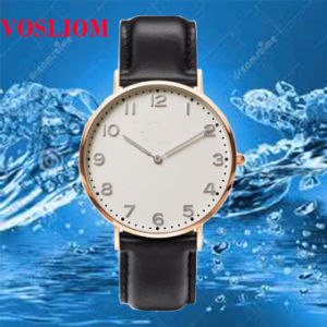 Yxl-622 Japan Movt. Stainless Steel Classical Leather Band Men Watch, Slim Genuine Leather Strap Dw Watches pictures & photos