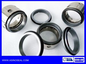 Multiple Spring Mechanical Seals as-R8-1t Replace AES M05s/Vulcan 1645s pictures & photos