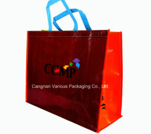 Reusable PP Woven Shopping Bag, Promotion PP Bag pictures & photos