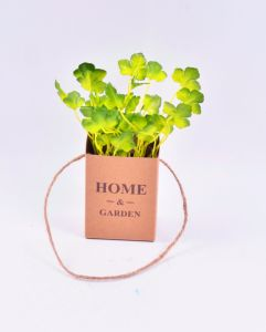 Cute Herbs and Grass in Paper Bag with Hanging pictures & photos