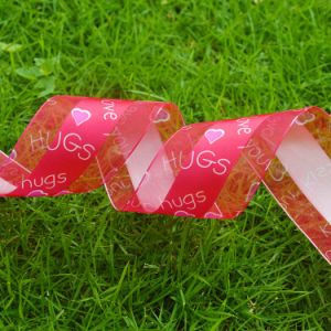 Polyester Satin Decorative Mesh Satin Edge Organza Ribbon Cheap Price pictures & photos