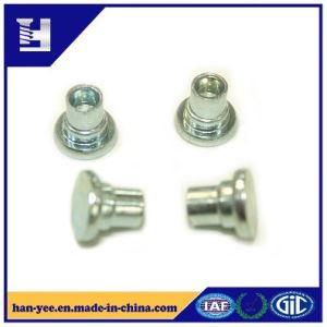 Steel Rivets for Pipe and Hollow Tubular pictures & photos