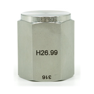 Pipe Fitting Plug Cap 316 Stainless Steel pictures & photos