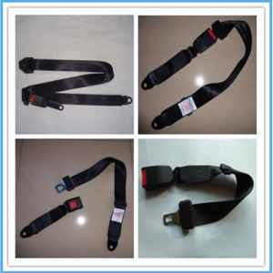 China Two Point Seat Belt with CCC Certificate pictures & photos