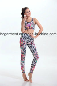 Quickly Dry Sports Suits for Women/Lady, Yoga Wear, Running Wear pictures & photos