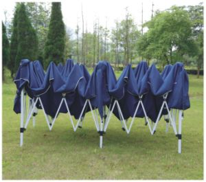 Folding Metal Gazebo with Sidewall pictures & photos