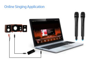 Wireless Digital USB Microphone System pictures & photos