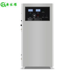40g 50g 60g Water Treatment Ozone Generator for Fish Farming pictures & photos