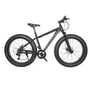 Large Tire Bikes for Snow pictures & photos