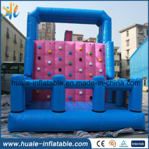 High Quality Inflatable Climbing Slide for Kids