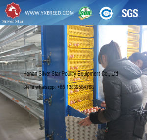 Superior Quality Chicken Battery Poultry Cages Factory pictures & photos