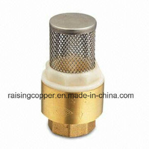 Brass Spring Check Valve with Filter pictures & photos