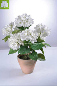 Artificial Hydrangea White in Paper Mache Pot for Home Deco