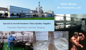 GMP Manufacturer Hot Sale 99.5% Anastrozo. Testosterone Enanthate Arimidex Pharmaceutical Raw Material pictures & photos