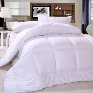 High quality Warm Goose Down Quilt pictures & photos