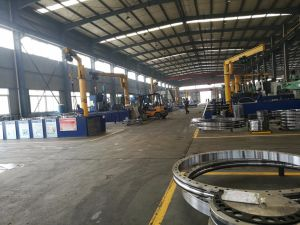 50mn 42CrMo Hitachi Slewing Bearing for Excavator pictures & photos