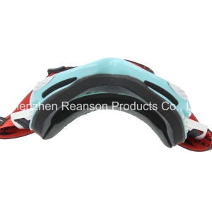 Reanson Professional OTG Anti-Fog Double Lenses Snowboard Skiing Goggles pictures & photos