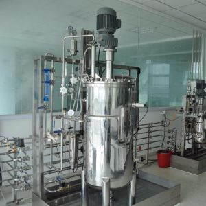 170 Liters Stainless Steel Fermenter pictures & photos