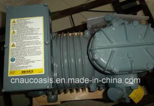 Emerson Dwm Copeland Semi-Hermetic Compressors (DLF-20X /DKSJ-10X) pictures & photos