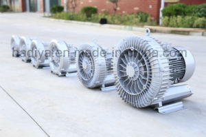 The Best Ce Approved Blower pictures & photos