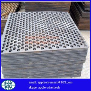 Round Shape Perforated Metal for Filtering pictures & photos