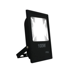 Certificate Quality New 100W LED Flood Light pictures & photos