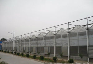 Low Price Anti Ultraviolet Strong PC Board Greenhouse pictures & photos