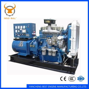 New Holland Silent Diesel Generator Set pictures & photos