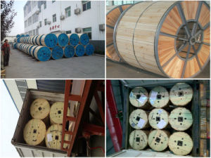 Hot Sale Overhead Conductor ACSR Cable pictures & photos