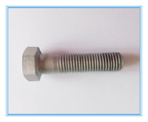 DIN6914 Hex Head Bolt with Large Head pictures & photos